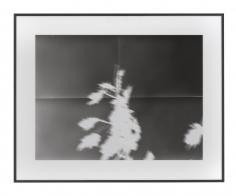 Untitled (8.9.12 - 21.10.12), 2012