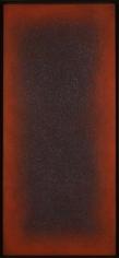 Natvar Bhavsar GUNTHAN II 2005 Oil on canvas 38.5 x 16.5 in.