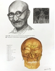 Debanjan Roy  Untitled 2, 2009  Acrylic on paper  14 x 11 in