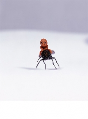 Ham Jin. Aewan love #1, 2004. C-print photograph of a sculpture made of polymer clay, fly and mixed media, Size of photo: 125.5 x 155 cm, size of sculpture: 1 cubic cm (approximate).Courtesy of the artist & PKM Gallery.