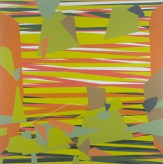 CAMILO SANIN Estructura Subyacente 208 2010, acrylic on canvas, 32 x 32 inches