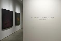 Shinichi Maruyama