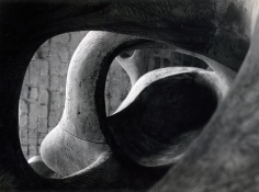Detail of Reclining Figure (Internal and External Forms), 1953, 	Gelatin silver print, printed c. 1953