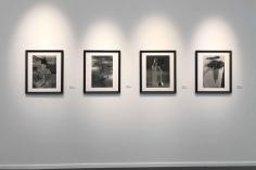 Frieze Masters 2018 : Keith A. Smith, F. Holland Day, Aaron Siskind, Frantisek Drtikol, Jaromir Funke | installation image | Bruce Silverstein Gallery