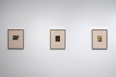 Arrangements by Marie Cosindas | installation image 2014 | Bruce Silverstein Gallery