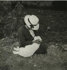 Catalin Valentin's Lamb, Ancash, Peru, 1981