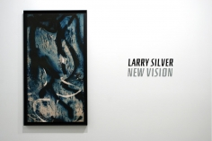 Larry Silver : New Vision | installation image 2011 | Bruce Silverstein Gallery