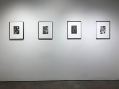 André Kertész : Window Views   installation image 2019   Bruce Silverstein Gallery