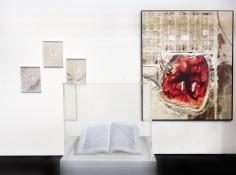 PHOTOFAIRS San Francisco 2018 : Mishka Henner | installation image | Bruce Silverstein Gallery