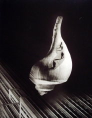 City Shell, 1938, Gelatin silver print. 19 1/2 x 15 inches