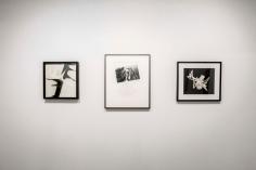 Monochrome | Bruce Silverstein Gallery