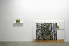 Eileen Neff : A Prologue   installation image 2014   Bruce Silverstein Gallery