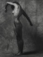 Robert Mapplethorpe - Lisa Lyon, 1981 | Bruce Silverstein Gallery