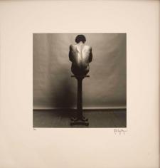 Robert Mapplethorpe - Z' portfolio, 1981 Thirteen selenium-toned gelatin silver prints | Bruce Silverstein Gallery
