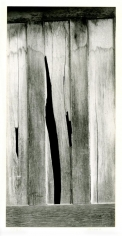 Board Fence Abstraction, 1957, Gelatin silver print mounted to board, printed c. 1957