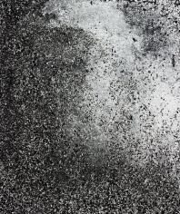 Nicolai Howalt - Endings #5, 2011 Chromogenic print ; Bruce Silverstein Gallery