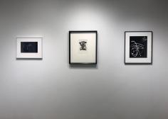 Drawing the Line : John Wood, Barbara Morgan, Joel-Peter Witkin, Aaron Siskind, Frederick Sommer, Harry Callahan, Sigmar Polke, Brea Souders | Bruce Silverstein Gallery