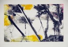 Robert Zandvliet Untitled 17, 1999