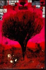Raphael Mazzucco Red Tree, 2018