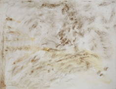"""""""Untitled"""", 1990 Silver nitrate, silver bromide, silver sulphate, dammar on canvas"""