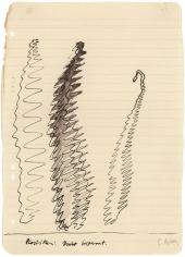 """Sculptures: Taut Wire"", 1968"