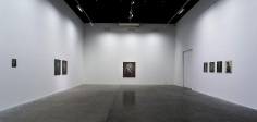 Testament,Ross Chisholm, Installation view at Green Art Gallery, Dubai, 2014