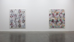 Palimpsest: Unstable Paintings for Anxious Interiors, Installation view at Green Art Gallery, Dubai, 2014