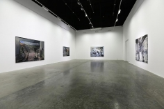 King Give Us Soldiers, Zsolt Bodoni, Installation view at Green Art Gallery, 2013