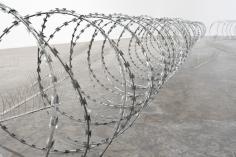 Wilfredo Prieto, Anti-bird lines, anti-human lines (detail), 2018, Bird deterrent spikes, wire razor, Dimensions variable