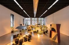 Shadi Habib Allah, Biscuits and Green Sox Maaike, 2016, Installation view at Reena Spaulings, NY