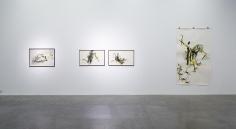 Acid Fields,Shawki Youssef, Installation view at Green Art Gallery, Dubai, 2013