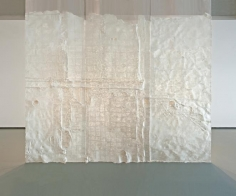 Nazgol Ansarinia, Membrane, 2014, Paper, paste & glue, 550 x 500 cm