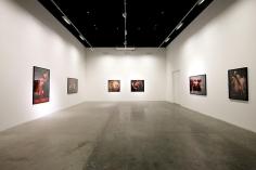 Innerscapes, Nazif Topcuoglu, Installation view at Green Art Gallery, Dubai, 2012