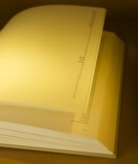 Nazgol Ansarinia, NSS book series(detail), 2008