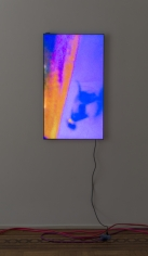 """Luca Dellaverson """"Mystic Styles (The Drowning Dog) 3"""", 2017 LCD Monitor, epoxy resin, digital file 40-5/8 x 23-1/8 x 1-1/2 inches"""