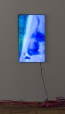 """Luca Dellaverson """"Mystic Styles (The Drowning Dog) 4"""", 2017 LCD Monitor, epoxy resin, digital file 40-5/8 x 23-1/8 x 1-1/2 inches"""
