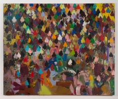 Brenna Youngblood Democratic Forest, 2014