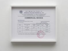 Michael Moshe Dahan, Chinese Invoice