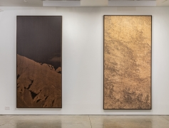 Clifford Ross: Prints on Wood