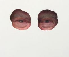 A Record-Setting Man Ray and a Vandalized 'Trump l'oeil' Mark Paris Photo Week
