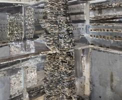 "Exhibition Review: Marjan Teeuwen - ""Destroyed House"""