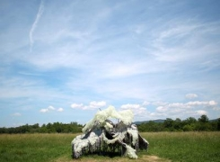 Lynda Benglis: The New York Times