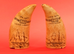 "Pair of scrimshaw Whales Teeth with Initials ""FM"", Circa 1840"