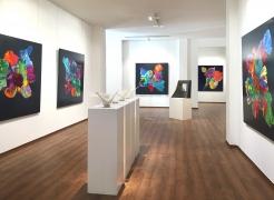 Recent Exhibition