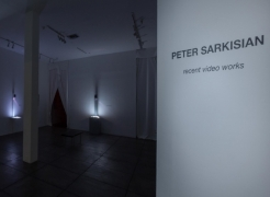 PETER SARKISIAN