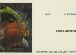 Sandy Winters: New Drawings (Drawing Gallery)