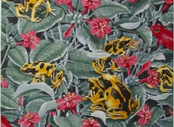 Alain Vaes 'Untitled (Frogs and Flowers),' 2009