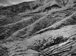 Frank Gohlke: Mount St. Helens