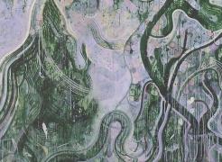 Tam Van Tran: Purple System