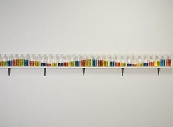"Alt=""Tony Feher, (Singer of Many), 2008, 31 glass bottles with screw caps, water, food color and painted wood shelf"""